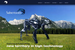 Sabertooth Technology Group