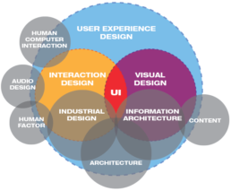 UI/UX infographic chart
